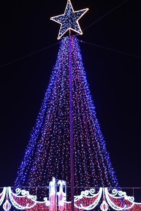 The Christmas Lights Christmas Tree